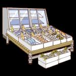 魚屋の店先のイラスト