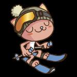 スキーをする猫