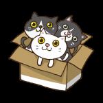 ダンボール猫のイラスト