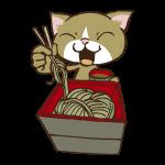 そばを食べる猫